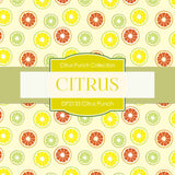 Citrus Punch Digital Paper DP2133 - Digital Paper Shop - 3