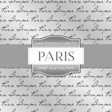Silver Paris Prints Digital Paper DP887 - Digital Paper Shop - 4