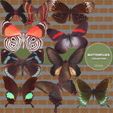 Butterflies Digital Paper DP3526 - Digital Paper Shop - 4