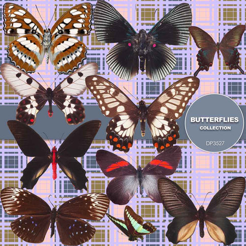 Butterflies Digital Paper DP3527 - Digital Paper Shop - 1