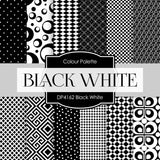 Black White Digital Paper DP4162 - Digital Paper Shop - 1