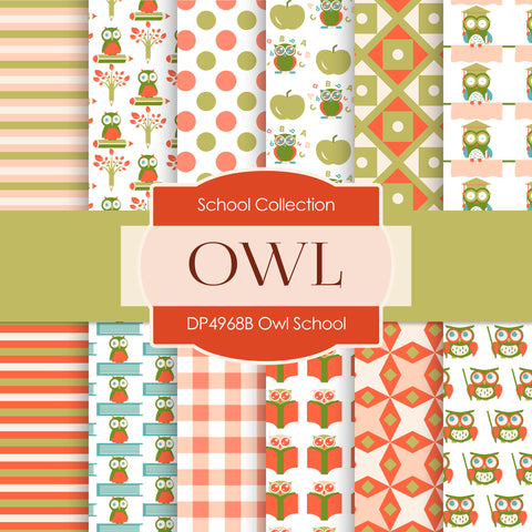 Owl School Digital Paper DP4968B - Digital Paper Shop - 1