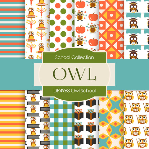 Owl School Digital Paper DP4968 - Digital Paper Shop - 1