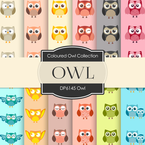 Owl Digital Paper DP6145B