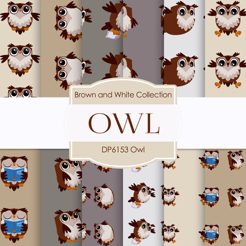 Owl Digital Paper DP6153B