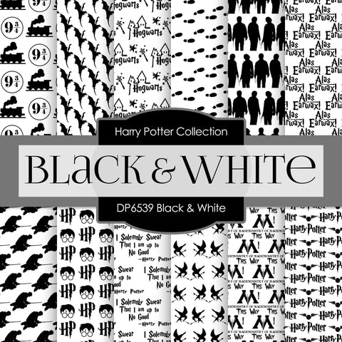 Black and White Harry Potter Digital Paper DP6539