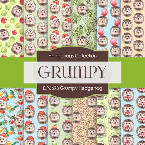 Grumpy Hedgehog Digital Paper DP6693