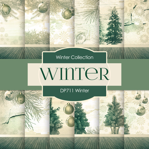 Winter Digital Paper DP711 - Digital Paper Shop - 1