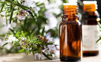 Rosemary Oil | Natural Oils for Optimal Hair Growth