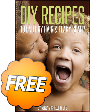 diy recipes ebook