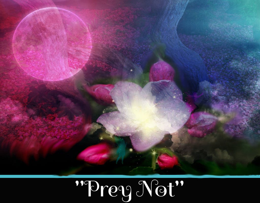 """PREY NOT"" - SACRED SHADOW ESSENCE OF LIGHT 014"