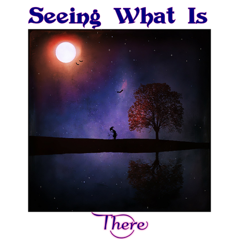"""SEEING WHAT IS THERE"" - Spirit*Wise Wee*Book (digital)"
