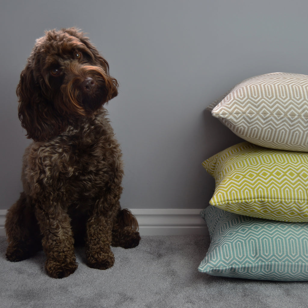 Fabulous Floor Cushions from McAlister Textiles