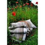 Charger l'image dans la galerie, McAlister Textiles Angus Beige Cream Tartan Cushion Cushions and Covers