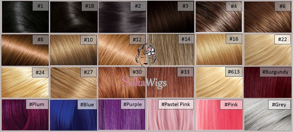 Hair Color Chart  Silkawigs