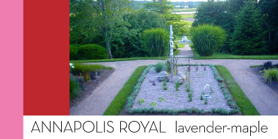 Annapolis Royal — lavender-maple