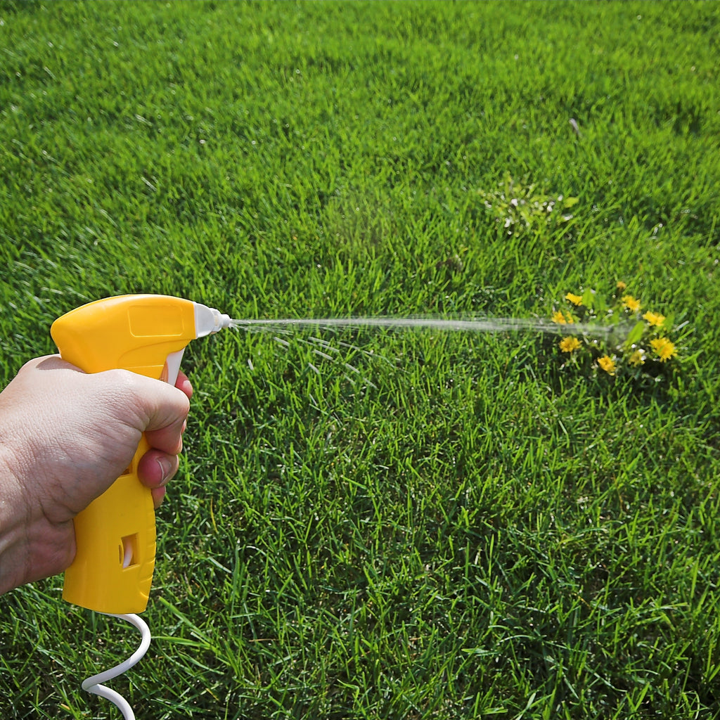 killing weeds with spray