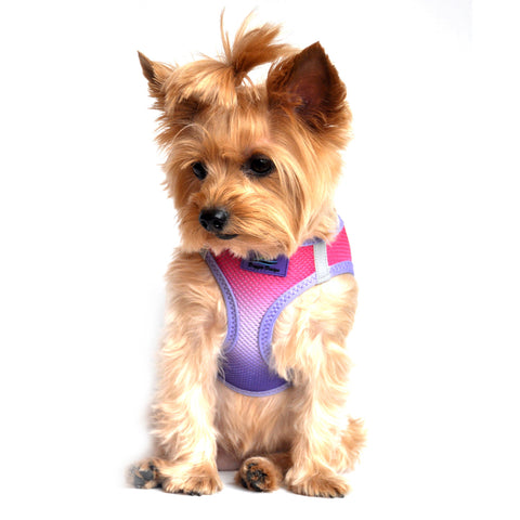 "Doggie Design ""American River"" Choke-Free Dog Harness - Raspberry Sundae"