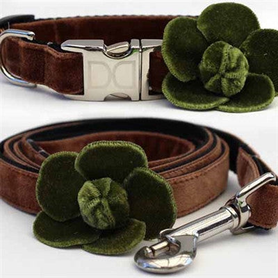 Diva Dog Camellia Collection - Olive- All Metal Buckles