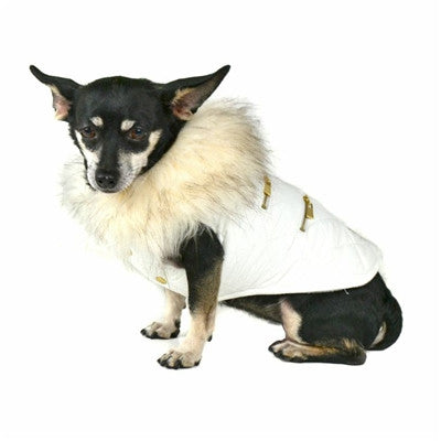 Dogs of Glamour Coco Quilt Jacket