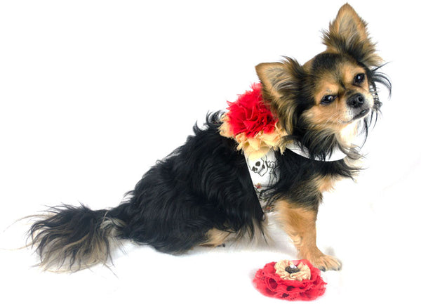 Red Red Rose Sugar Snap Harness