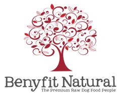 Benyfit Natural Logo