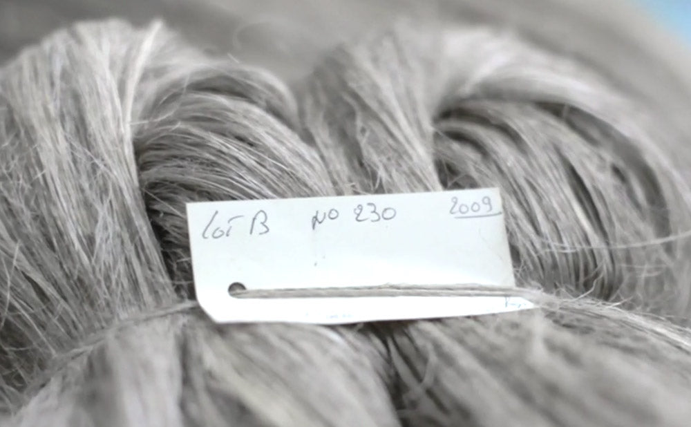 Heckled flax fibers. Image from the Be Linen Movie by Benoit Millot