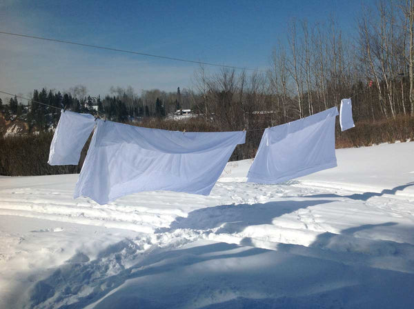rough linens clotheslines soft beautiful breezy laundry bedding snow white sheets wilderness backyard