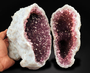 A perfectly purple complete geode of Amethyst.  Both halves of this special piece come together to form its original whole.  A traditional stone of protection, the perfect gift to share with a distant friend.  Amethyst is a member of the quartz family with a trigonal crystal system and a hardness of 7. Its purple colour comes from trace amounts of iron and aluminum.  24 CMS X 22 CMS 3050 GMS