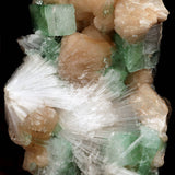 Apophyllite green with Scolecite & Stilbite Natural Mineral Specimen #3720  https://www.superbminerals.us/products/apophyllite-green-with-scolecite-stilbite-natural-mineral-specimen-b-3720  Features:A very aesthetic combination piece featuring numerous large, lustrous green modified cubes of Apophyllite on a dark-brown matrix hosting numerous acicular sprays of colorless to white, satiny Scolecite along with a couple of Stilbite crystals. The contrast, crystal formation and symmetry