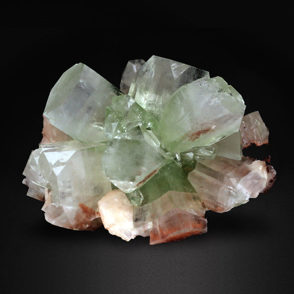 "Limited edition from the latest ""Water Well Pocket"" find from Maharashtra, India. Spays of stunning tabular Green Apophyllite Crystals.  Apophyllite is a hydrated potassium calcium silicate and is a rarer form of Apophyllite in shades of green. It forms within clusters along with clear Apophyllite  and is often found in combination with other Zeolitic minerals such as Stilbite and Heulandite.  8 CMS X 7 CMS 250 GMS Location: Jalgaon, Maharashtra, India"