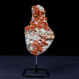 Heulandite Orange Crystals on Mordenite Plate W/Stand Natural Mineral …  https://www.superbminerals.us/products/heulandite-orange-crystals-on-mordenite-plate-w-stand-natural-mineral-specimen-b-3855  FeaturesA tall and striking half of an Heulandite and Mordenite Plate with a custom made stand. The piece has orange Heulandite crystals on Mordenite plate. Its particularly like the unique, vertical presentation of the piece, and the colors, contrast and crystallization are stunning. An amazing, all natural