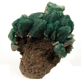 Marshy Apophyllite Flower on Basalt Matrix - #20T132 Apophyllite Superb Minerals