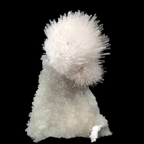 Features: 1. A self-standing specimen of a perfect round spray of mesolite formed at the top of the chalcedony stalactite. 2. The spray of mesolite includes crystals of calcite and the matrix includes crystals of apophyllite.  Dimensions 17 CMS X 13 CMS 1.280 Kg  Primary Mineral(s): Mesolite Secondary Mineral(s): Apophyllite Matrix: Chalcedony  Locality: Pune, Maharashtra, India Year of Discovery: 2018