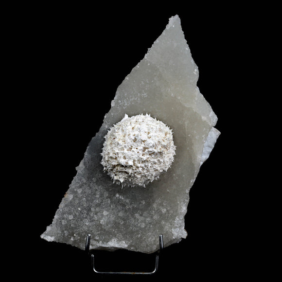 Mordenite Ball 'Full Moon' On MM Quartz Plate Natural Mineral Specimen…  https://www.superbminerals.us/products/mordenite-ball-full-moon-on-mm-quartz-plate-natural-mineral-specimen-b-3851  FeaturesThis is a truly intriguing piece. The difference truly grabbed attention. On one hand you have this enormous full moon bunch of flawless Mordenite precious ball with an excellent silvery shine, set on a radiant lighting framework of MM Quartz with an appearance like a shimmering sky. Incredible piece