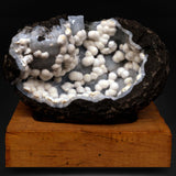 Okenite Balls Attached to MM Quartz Geode # M24 Okenite Superb Minerals