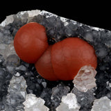 Red Fluorite Ball on Sparkling MM Quartz Natural Mineral Specimen # B …  https://www.superbminerals.us/products/red-fluorite-ball-on-sparkling-mm-quartz-natural-mineral-specimen-b-3816  Features A miniature specimen of crystalline Quartz Stalacties hosting a nested hemisphere of red Fluorite. Red Fluorite spheres are rich dark red color, and very smooth and damage-free. The quartz crystals are sharp and terminated, with a bright luster. Harder to find, and this one is as good as they get for the size