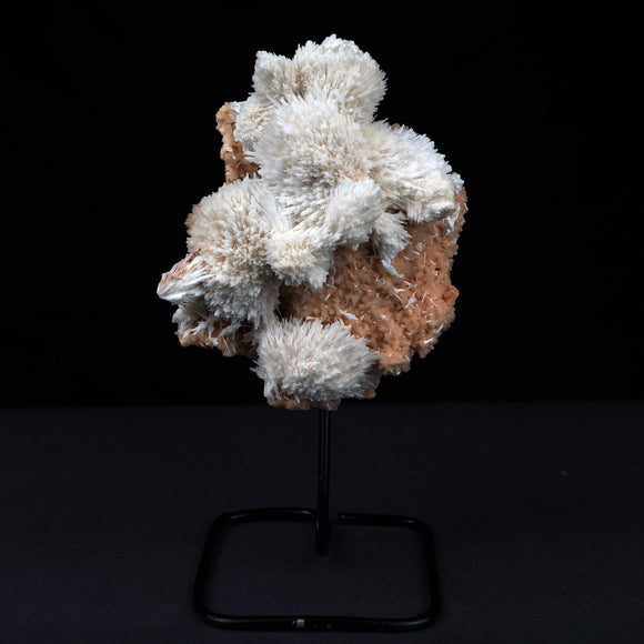 Scolecite Balls Heulandite Mounted On Stand Natural Mineral Specimen #…  https://www.superbminerals.us/products/scolecite-balls-heulandite-mounted-on-stand-natural-mineral-specimen-b-3869  FeaturesNumerous spike Scolecite spray balls on brown chalcedony plate. Its particularly like the unique, Spike balls scattered all over inside Chalcedony plate, Snowy balls from the base presentation of the piece, and the colors, contrast and crystallization are stunning. An amazing, all natural and eye-catching piece