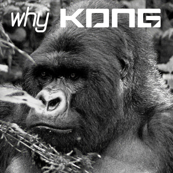 Why KONG?