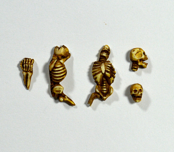 Skeleton Base Accessories x 5