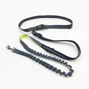HANDFREE DOG LEASH