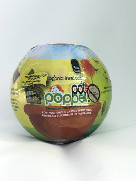 Pot Popper Globe for Fungus Gnat
