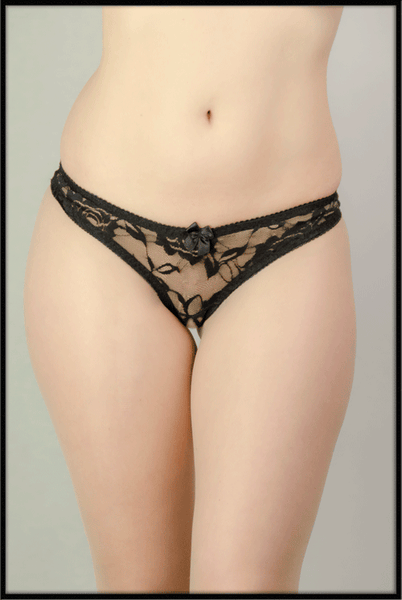 Ouvert Lace Brief