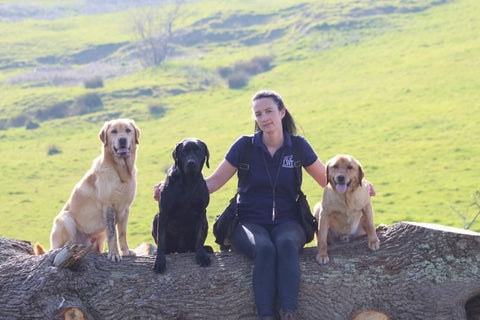owner with gundogs