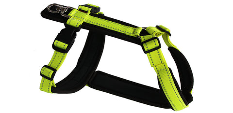 Fluorescent Yellow Tracker Harness