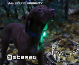 Scarab Safety Light