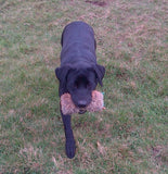 Gundog Dummy (Half Fur Half Canvas)