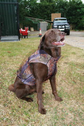 Technical Neoprene Dog Vest (Jack Pyke)