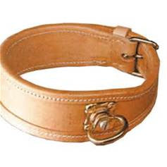Traditional Leather Tracking Collars