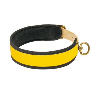 Leather Collar (Fluorescent Yellow)